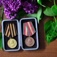 Медаль за бой, медаль за труд. :: Владимир Болдырев