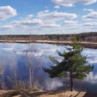 Река Юхоть. :: Ирина Нафаня