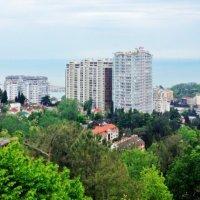 Вид на город со смотровой башни на ул.Альпийская :: Tata Wolf