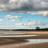 На Фиском заливе после отлива 2 :: Виталий