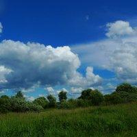 Летний пейзаж. :: Александр Атаулин