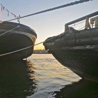 Корабли трутся бортом о борт. Кораблям, видно, тесен порт. :: Елена