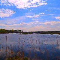 ...у озера... :: Victor