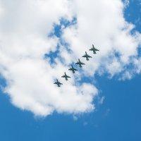 Как над нашим домом птицы пролетали :: Андрей Шаронов