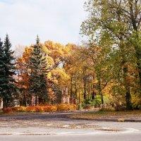 Осень 3 :: Алёна Корсакова