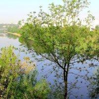 Река Ока 9мая. :: Борис Митрохин