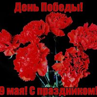 С праздником Победы, дорогие друзья! Мира и благополучия! :: Nina Yudicheva