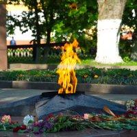 Вечный огонь :: Леонид Железнов