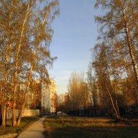 Город в закатном освещении. :: Мила Бовкун