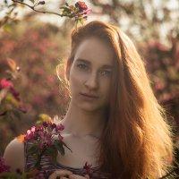Жар птица - Катя :: Dmitry Yushkov