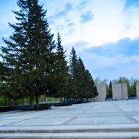 Монумент славы в Новосибирске :: Света Кондрашова