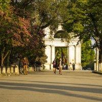 Триумфальная арка в Кишиневе :: Юля Колосова