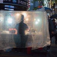 rainy Seoul :: Sofia Rakitskaia