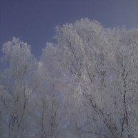 _) :: Екатерина Сокова