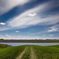 Зелёные волны :: Виктор Четошников