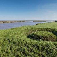 Круги на траве :: Виктор Четошников