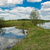 Майская река Дубна. :: Виктор Евстратов