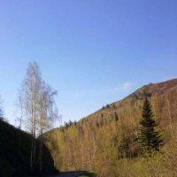 Восточный Казахстан . :: Мила Бовкун