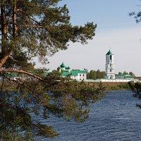 Александро-Свирский монастырь. :: Николай Тренин