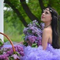 сиреневые мечты... :: Виктория Зайцева
