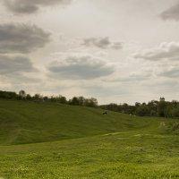Просторы Молдавии :: Юля Колосова