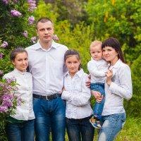 Семья. :: Кристина Волкова(Загальцева)