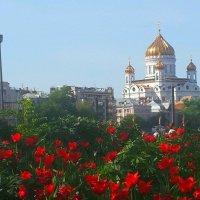 Москва  майская :: Вера