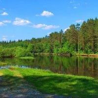 И хочется быть лесом и рекой... :: Лесо-Вед (Баранов)