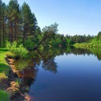 И неподвижна тишина... :: Лесо-Вед (Баранов)