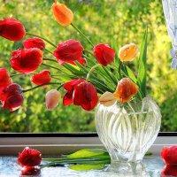 Утро с тюльпанами :: Павлова Татьяна Павлова