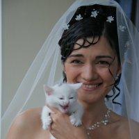 Мяу..., не хочу замуж, я же кот... :: Людмила Огнева