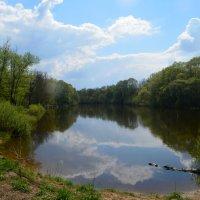 река Десна :: Lera Morozova