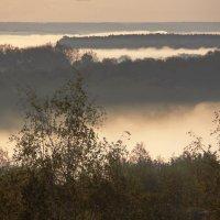 Утренний туман :: Наталия С-ва