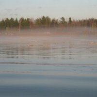 забелелся туман над рекой :: Наталья Зимирева