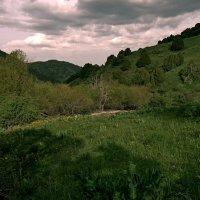 Весна в среднегорье :: Александр Грищенко
