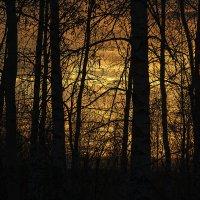 Закат сегодня словно блин в печи испёкся...)) :: Владимир Хиль