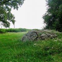 Камни :: Леся Українка