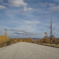 Дорожный пейзаж. :: Валентина Налетова