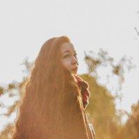 солнечная прогулка на закате :: Алина Дорофеева