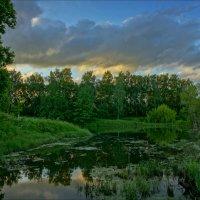 У старого пруда на закате. :: Igor Andreev