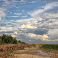 Дорожка вдоль залива :: Константин Снежин