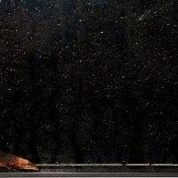 Слёзы капали... :: Елена - фотостилист, фотограф Ильина