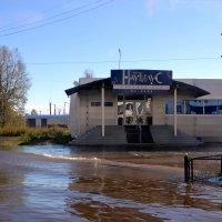 Наводнение :: Мария Коледа