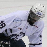 В  хоккей  играют  разные мужчины... :: АЛЕКС