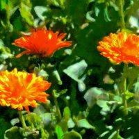 Цветы в саду :: Анатолий Чикчирный