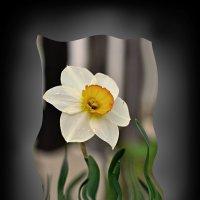 весна в повседневной жизни :: Сергей Розанов