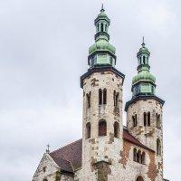 Собор в Кракове :: Юрий Мазоха