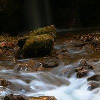 живая вода :: Евгений Ромащенко