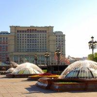 Мане́жная площадь :: Арина Дмитриева