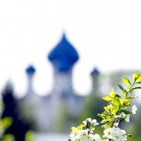 Весенний Суздаль :: Валерий Гришин